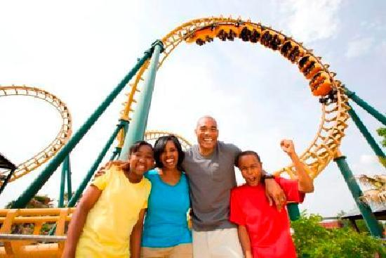 Valdosta, Geórgia: Wild Adventures is home to more than 40 thrill rides, including seven roller coasters.