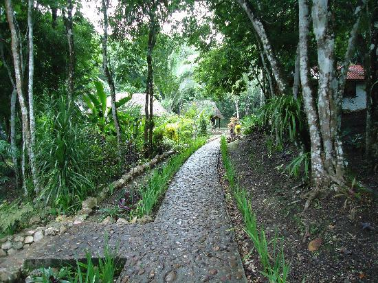 Table Rock Jungle Lodge: Grounds