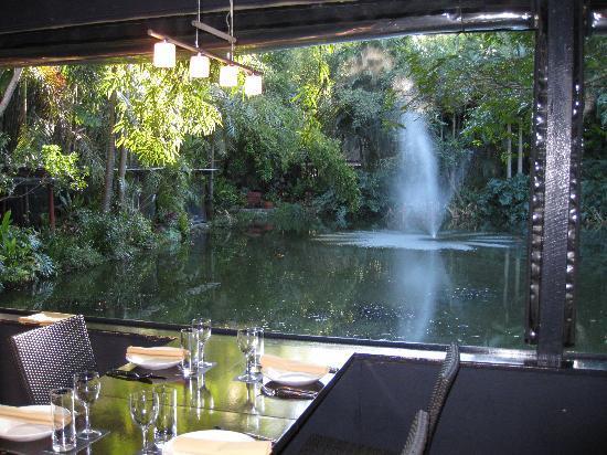 Yandina, Australia: view across lake
