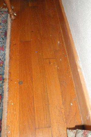 Sandy, OR: Dirty floor of our room