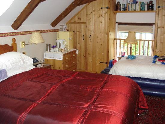 Stoke Fleming, UK: lovely Barn room
