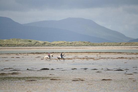 Croagh Patrick Stables : Beach ride