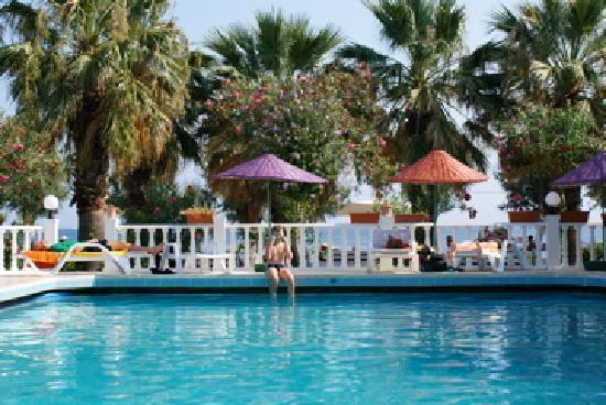 Yilmaz Hotel: Pool & gardens