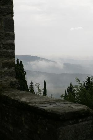 Castello di Montegiove: Estate seen form the castle