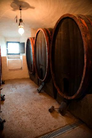 Castello di Montegiove: Wine cellar of the castle