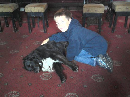 The Horse and Farrier Inn: My son with Jack the pub dog