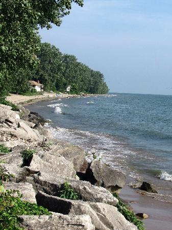 Pelee Places: Coast line in front of Bed and Breakfast