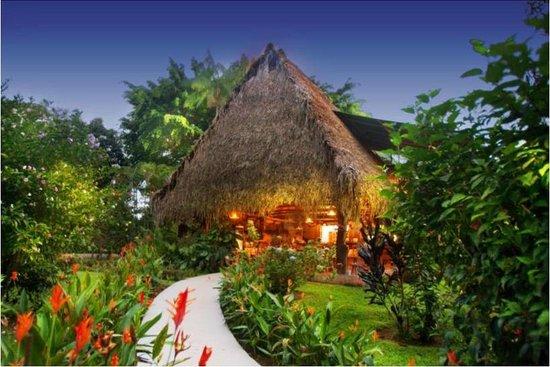 diquis del sur costa rica ojochal updated 2016 lodge. Black Bedroom Furniture Sets. Home Design Ideas