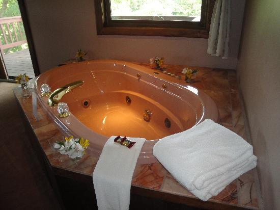 Point Au Roche Lodge : Jacuzzi