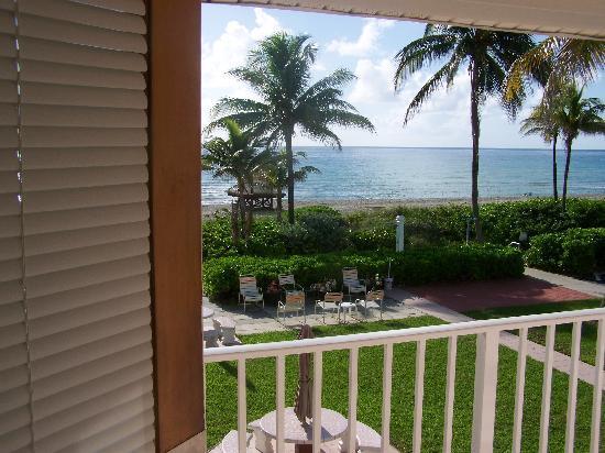 Manta Ray Inn: la vue depuis la chambre
