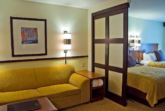 Hyatt Place Chesapeake/Greenbrier: Room Interior 4