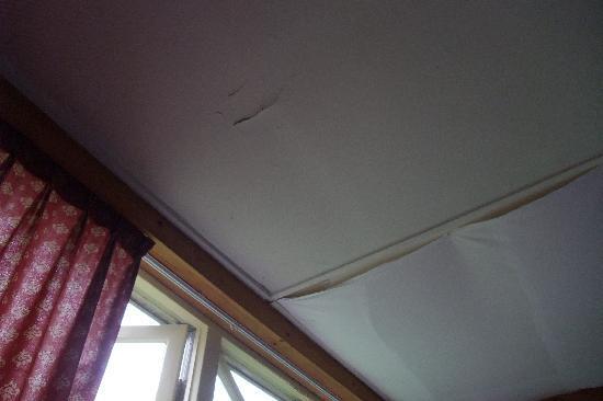 Fletcher Hotel Eerbeek : lekkend plafond