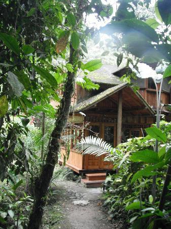 Mindo Garden: Cabin