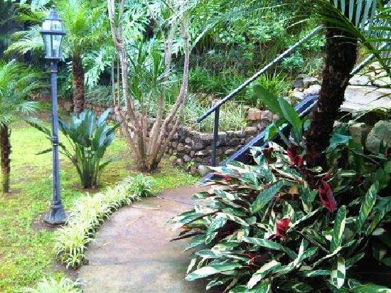 Villa Le Mas: Pathway