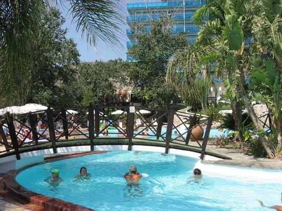 Hotel Calypso: piscine