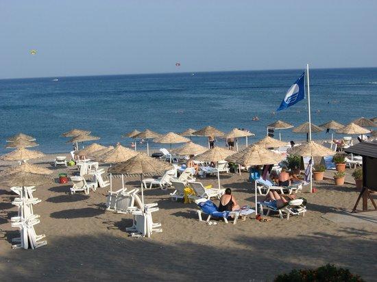 Hotel Calypso: vue sur la mer