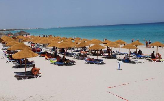 PrimaSol El Mehdi : beach