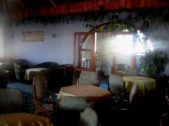 Ras Amba Hotel: The Bar