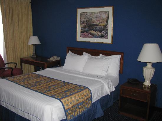 Residence Inn Las Vegas Henderson/Green Valley: room
