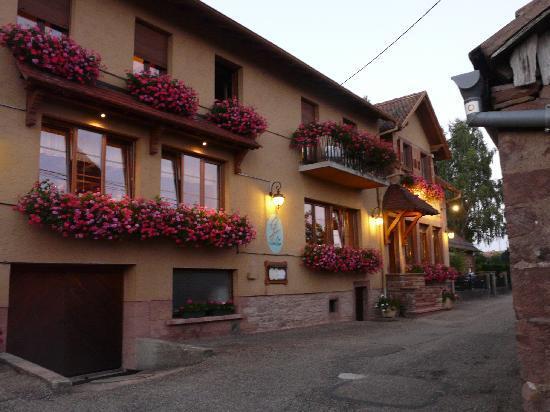 Hotel Spa et Restaurant au Chasseur: Vue de devant