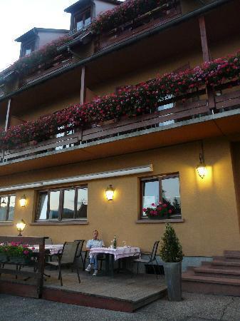Hotel Spa et Restaurant au Chasseur : Terrasse en facade