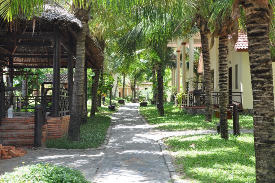 Ocean Star Resort: Grounds