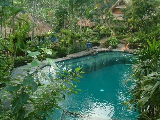 Hotel Tjampuhan & Spa: Larger pool