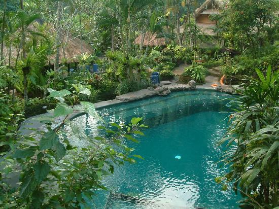 ทแจมปูฮานโฮเต็ลแอนด์สปา: Larger pool