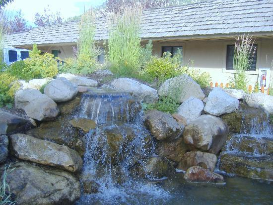 Flying Saddle Resort: Lots of water features on the property