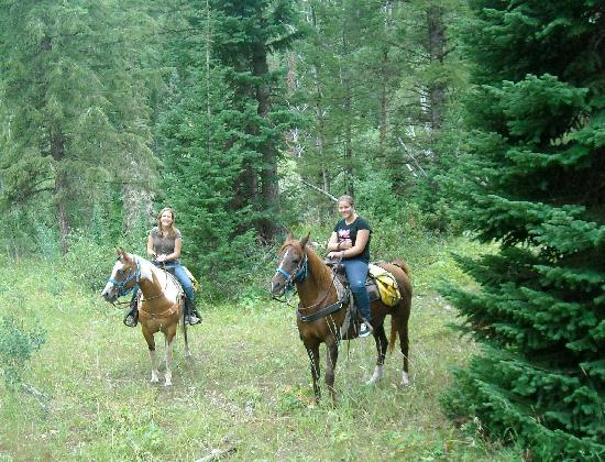 Flying Saddle Resort: Nearby horseback riding