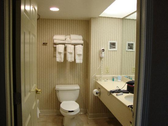 Hampton Inn & Suites Kansas City Country Club Plaza: Bathroom in Room 917