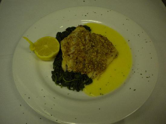 City Grill: Pecan Crusted  Grouper
