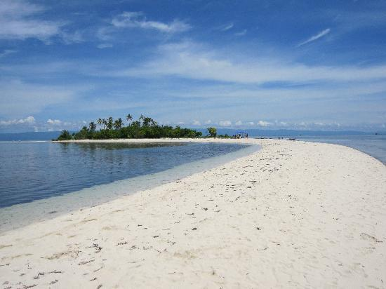 Balicasag Island, Filipinas: Virgin Island