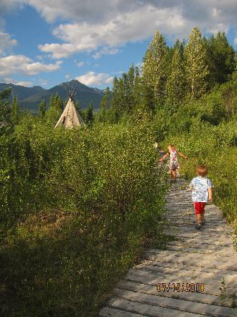 Teepee Meadows Guest Cottages: walking back from visiting the horses