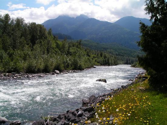 Riverbend Guest House B&B: Chilliwack River a 3 minute walk!