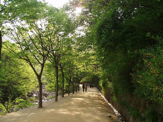 Gyeongsangnam-do, Sør-Korea: Natural park