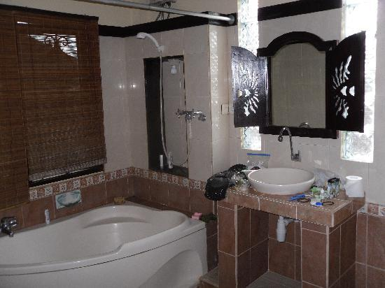 Sehati Guesthouse: bathroom (I realized too late, I forgot a picture of the nice big room itself!)