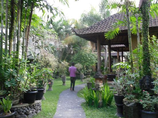 Sehati Guesthouse: garden where standard rooms are