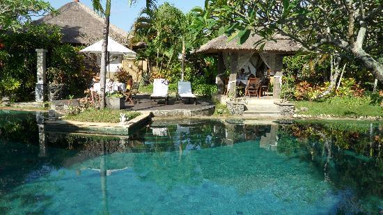Mimosa Jimbaran Bali Villa: La piscine ... que dire sinon fabuleuse !