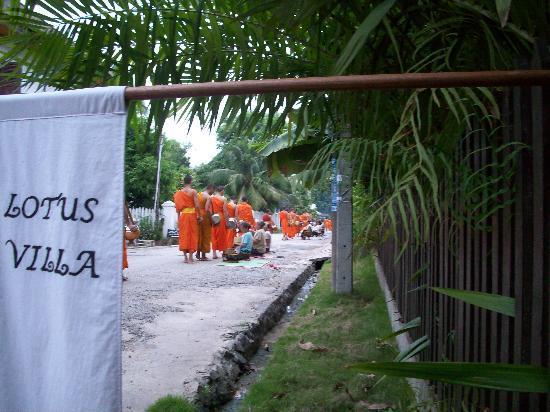 Lotus Villa Boutique Hotel : The alms procession