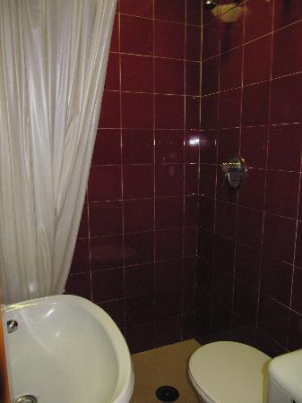 Hotel Hermes: Baño habitacion
