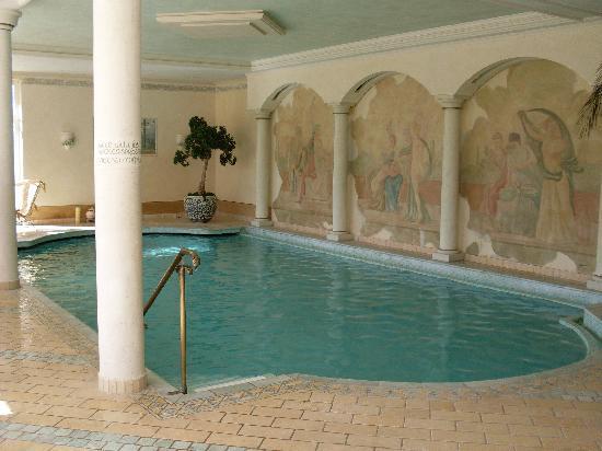 Hotel Rosa Eco Alpine Spa Resort: piscina riscaldata  interna