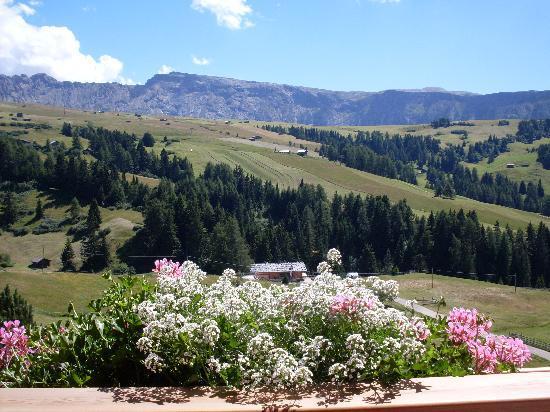 Hotel Rosa Eco Alpine Spa Resort: panorama dalla ns. stanza