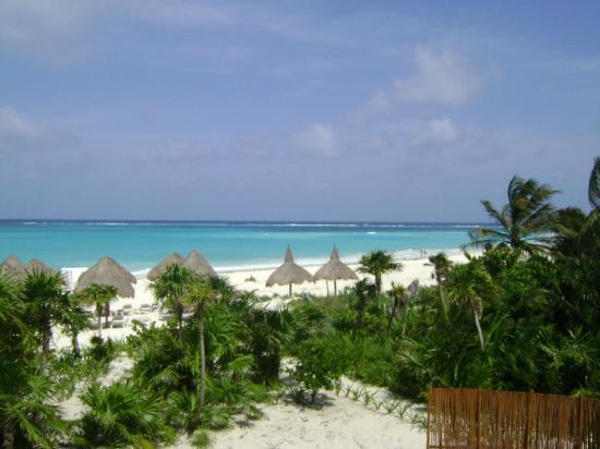 Secrets Maroma Beach Riviera Cancun: Ocean Front Room 2723