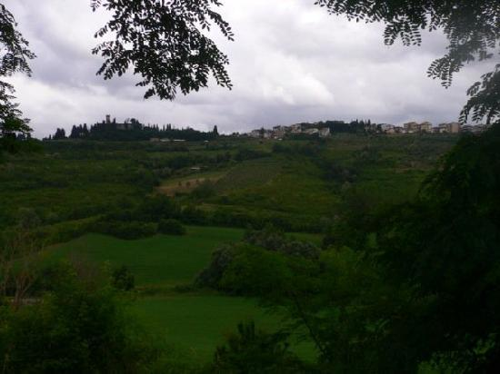 Le Mandrie di Ripalta: View from the Farmhouse
