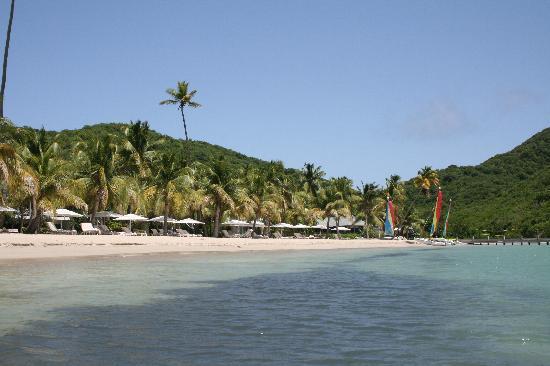 Carlisle Bay Antigua: the hotel