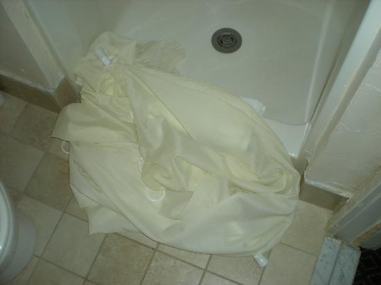 Hotel Texas: picture of shower curtain on the floor
