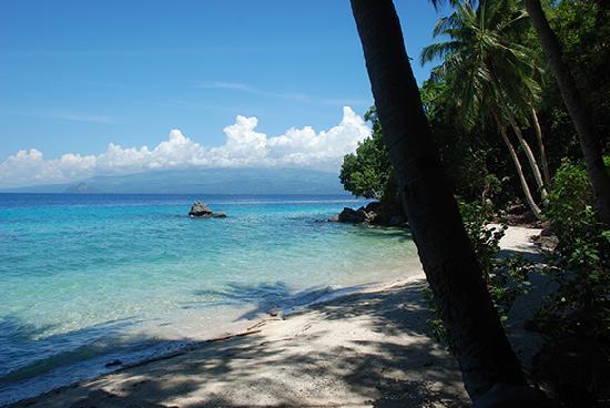 Camiguin Action Geckos Dive & Adventure Resort: White Beach