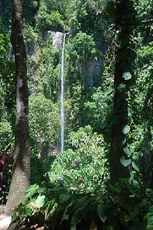 Camiguin Action Geckos Dive & Adventure Resort: Waterfall