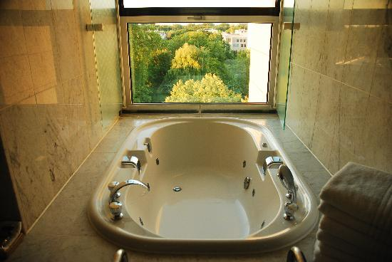Sheraton Berlin Grand Hotel Esplanade : Sicht aus dem Whirlpool in den Tiergarten
